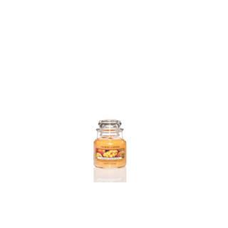 Petite Jarre Mango Peach Salsa