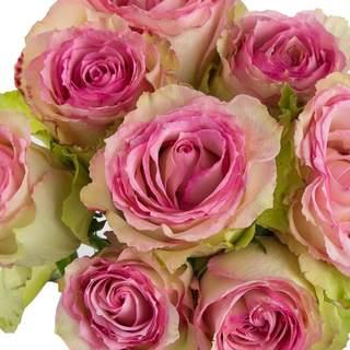 """Bouquet de roses """"Espérance"""""""