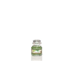 Petite Jarre Vanilla Lime